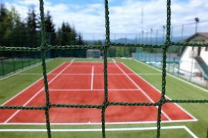plasa teren tenis